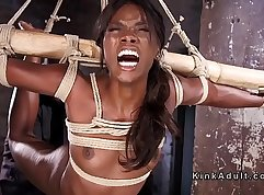 Sexy black pussy destroyed by pointy in bondage